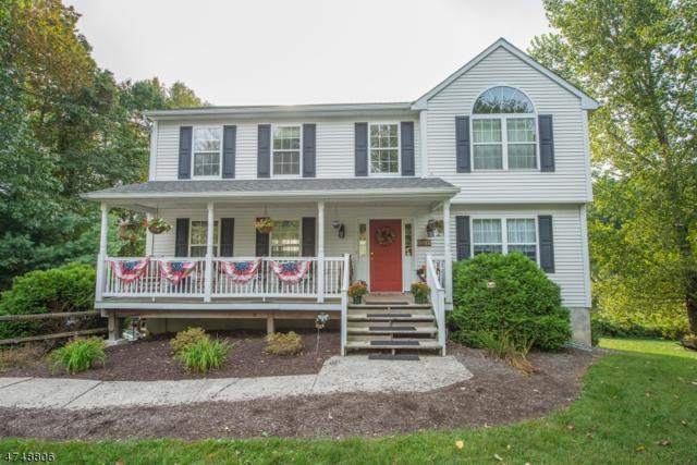 261 Germantown Rd, West Milford Twp., NJ 07480 (MLS #3420209) :: The Dekanski Home Selling Team