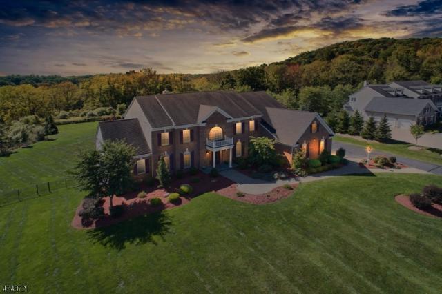 10 Ridgeline Dr, Washington Twp., NJ 07853 (MLS #3420636) :: The Dekanski Home Selling Team