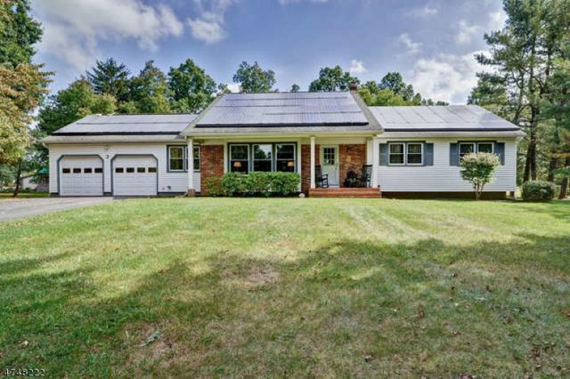 3 Briar Way, Hillsborough Twp., NJ 08844 (MLS #3420857) :: The Dekanski Home Selling Team
