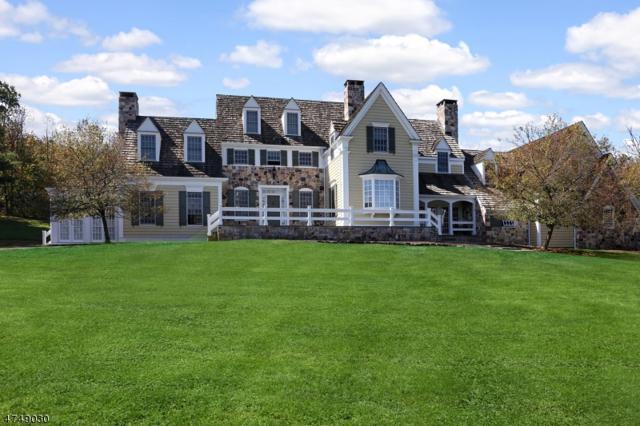 2 Coach 'N Four, Franklin Twp., NJ 08801 (MLS #3421017) :: The Dekanski Home Selling Team