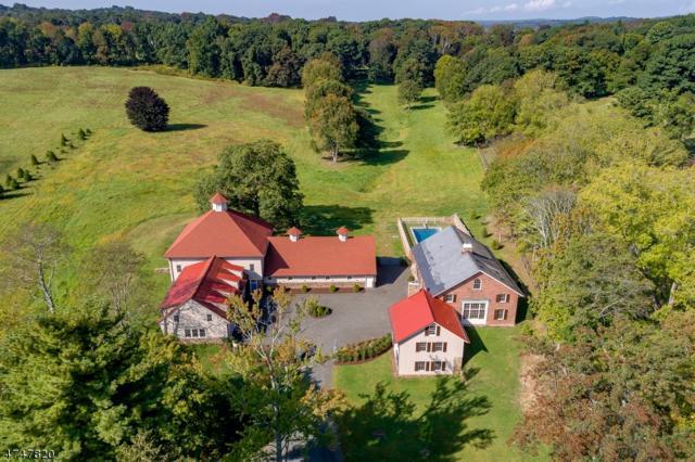 2 Dicksons Mill Road, Harding Twp., NJ 07976 (MLS #3421071) :: The Dekanski Home Selling Team