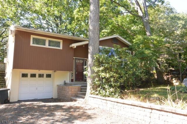 2 Iroquois Ave, Rockaway Twp., NJ 07866 (MLS #3421276) :: The Dekanski Home Selling Team