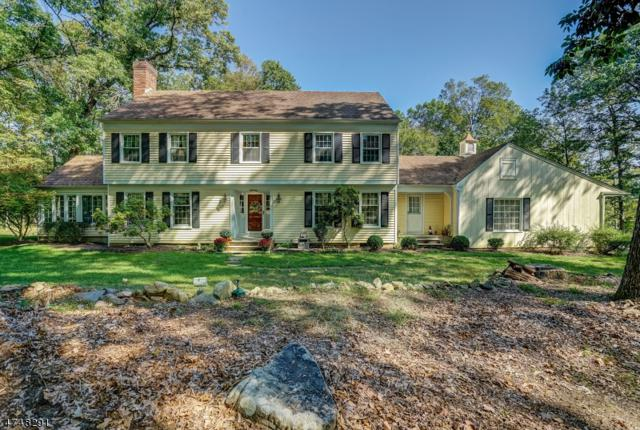 15 N Gate Rd, Mendham Twp., NJ 07945 (MLS #3421425) :: The Dekanski Home Selling Team