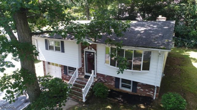 24 Pulaski Dr, Jefferson Twp., NJ 07438 (MLS #3421586) :: The Dekanski Home Selling Team