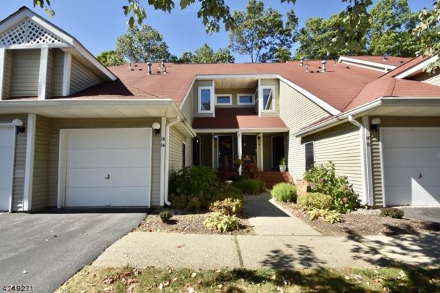 18 Petersburg Ct, Jefferson Twp., NJ 07438 (MLS #3421924) :: The Dekanski Home Selling Team