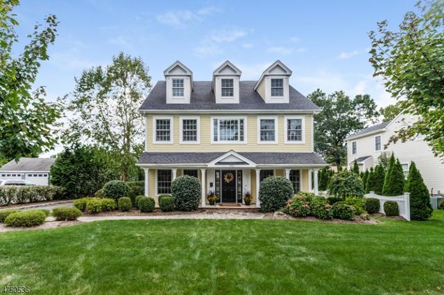 392 Woodland Rd, Madison Boro, NJ 07940 (MLS #3422032) :: Keller Williams Midtown Direct