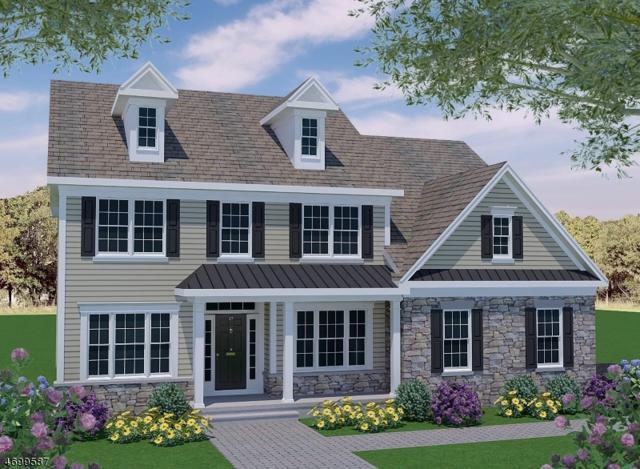 21 Boss Rd, East Amwell Twp., NJ 08551 (MLS #3422120) :: The Dekanski Home Selling Team