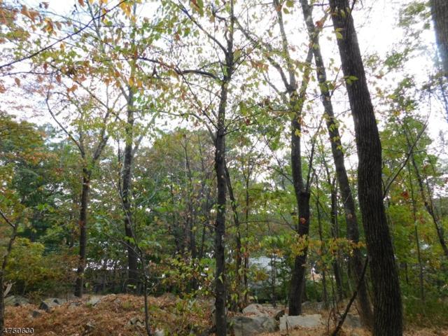 29 Fayson Lakes Road, Kinnelon Boro, NJ 07405 (MLS #3422156) :: The Dekanski Home Selling Team