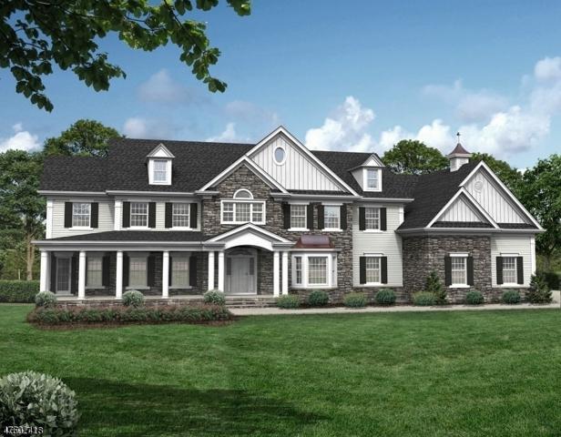 48 Kings Ridge Rd, Bernards Twp., NJ 07920 (MLS #3422163) :: SR Real Estate Group