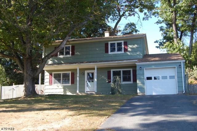 105 Sunrise Ter, Washington Boro, NJ 07882 (MLS #3422328) :: The Dekanski Home Selling Team