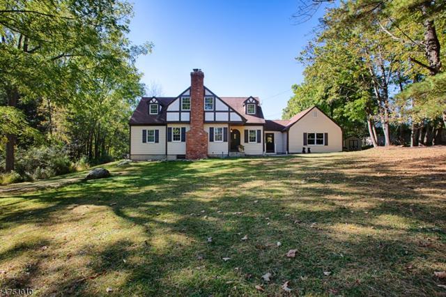 24 Ironia Rd, Mendham Twp., NJ 07945 (MLS #3422432) :: The Dekanski Home Selling Team