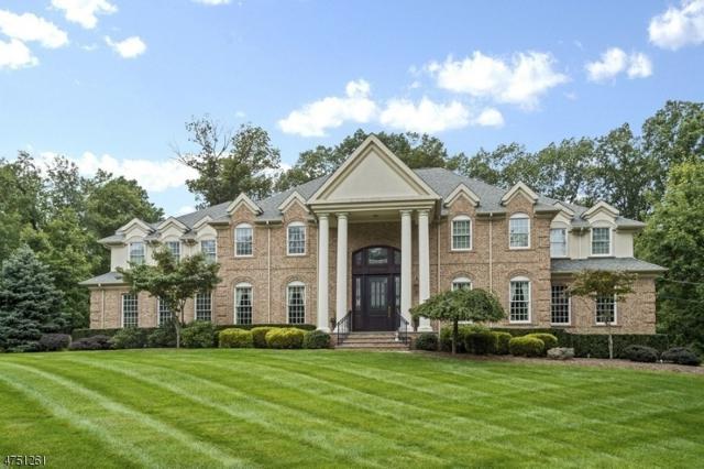 2 Caruso Ct, Bridgewater Twp., NJ 08807 (MLS #3422445) :: The Dekanski Home Selling Team