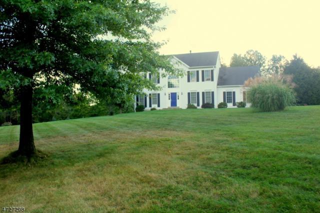 1 Meadow Run Road, Holland Twp., NJ 08848 (MLS #3422448) :: Keller Williams Real Estate