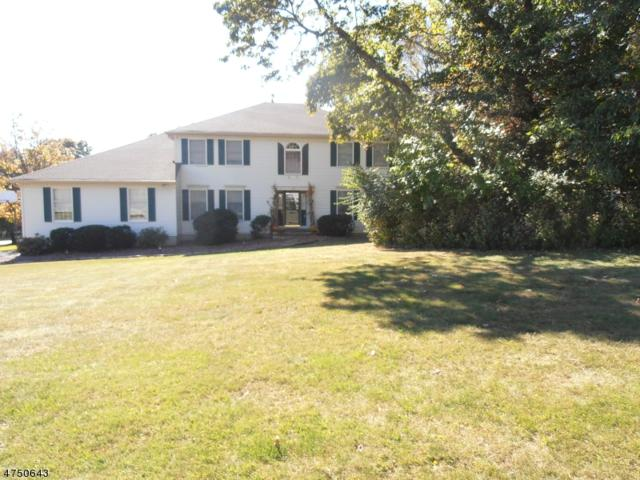 8 Victoria Dr, Mount Olive Twp., NJ 07836 (MLS #3422495) :: The Dekanski Home Selling Team