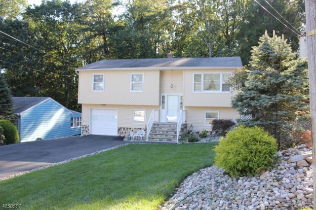 10 Mohawk Ave, Rockaway Twp., NJ 07866 (MLS #3422741) :: The Dekanski Home Selling Team