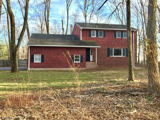 477 Route 518, Montgomery Twp., NJ 08558 (MLS #3423093) :: The Dekanski Home Selling Team