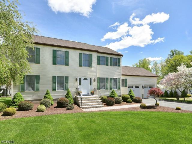 36 Cottage Lane, Sparta Twp., NJ 07871 (MLS #3423406) :: The Dekanski Home Selling Team