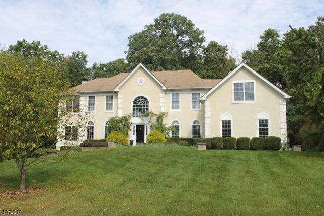 54 Morgan Dr, Sparta Twp., NJ 07871 (MLS #3423475) :: The Dekanski Home Selling Team