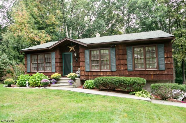 9 Hemlock Dr, Vernon Twp., NJ 07461 (MLS #3423550) :: The Dekanski Home Selling Team