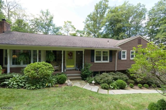 39 Cherry Tree Ln, Kinnelon Boro, NJ 07405 (MLS #3423606) :: The Dekanski Home Selling Team