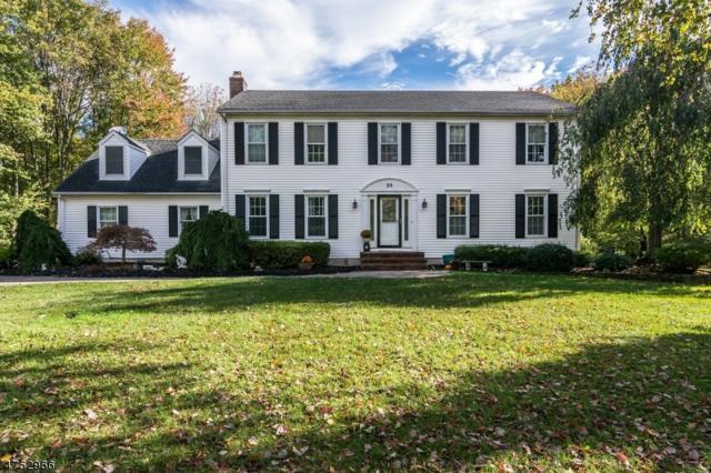 25 Bennington Dr, Mount Olive Twp., NJ 07836 (MLS #3424076) :: The Dekanski Home Selling Team