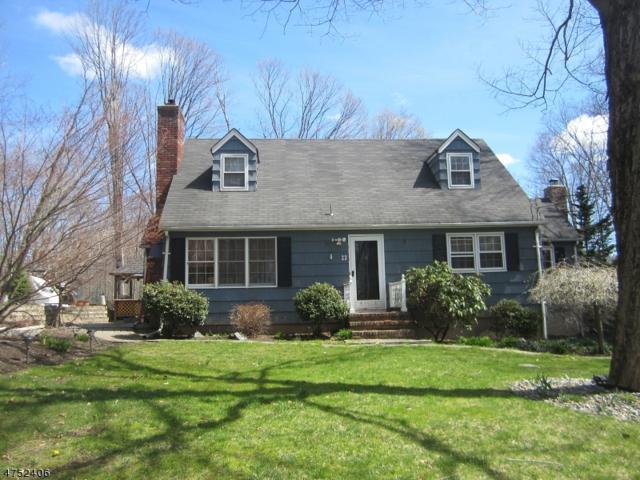 23 Riverview Rd, West Milford Twp., NJ 07438 (MLS #3424100) :: The Dekanski Home Selling Team