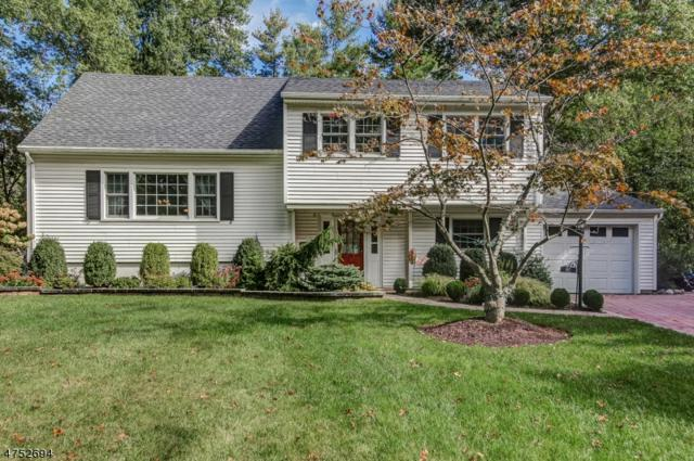 80 Brookside Drive, New Providence Boro, NJ 07974 (MLS #3424147) :: Keller Williams Midtown Direct