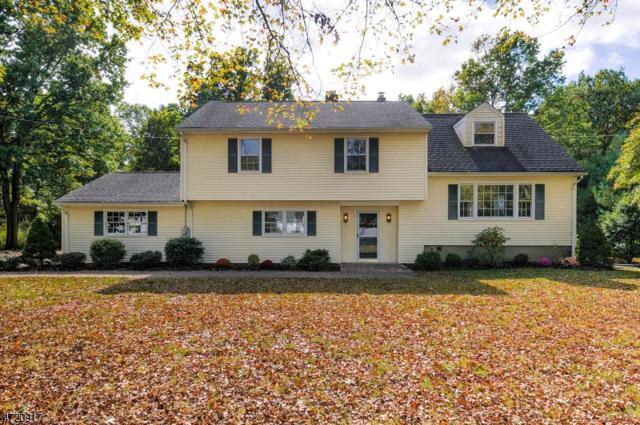 540 Spring Valley Dr, Bridgewater Twp., NJ 08807 (MLS #3424150) :: The Dekanski Home Selling Team