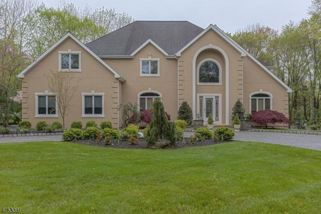 21 Woodward Dr, Montgomery Twp., NJ 08502 (MLS #3424195) :: The Dekanski Home Selling Team