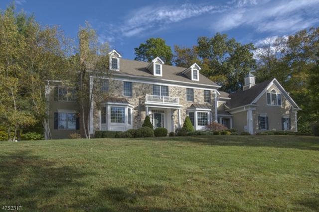 65 Ridgeview Dr, Bernards Twp., NJ 07920 (MLS #3424224) :: SR Real Estate Group