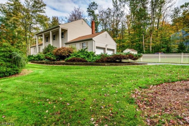 26 Meadowbrook Rd, Randolph Twp., NJ 07869 (MLS #3424238) :: The Dekanski Home Selling Team