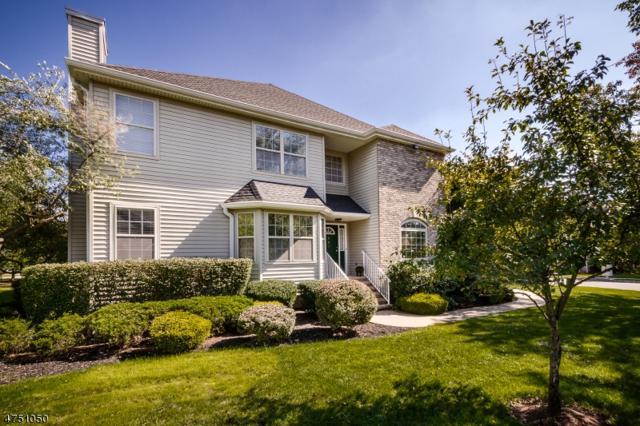 901 Taggert Dr, Montgomery Twp., NJ 08502 (MLS #3424459) :: The Dekanski Home Selling Team