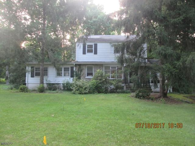 1561 Cooper Rd, Scotch Plains Twp., NJ 07076 (#3424889) :: Daunno Realty Services, LLC