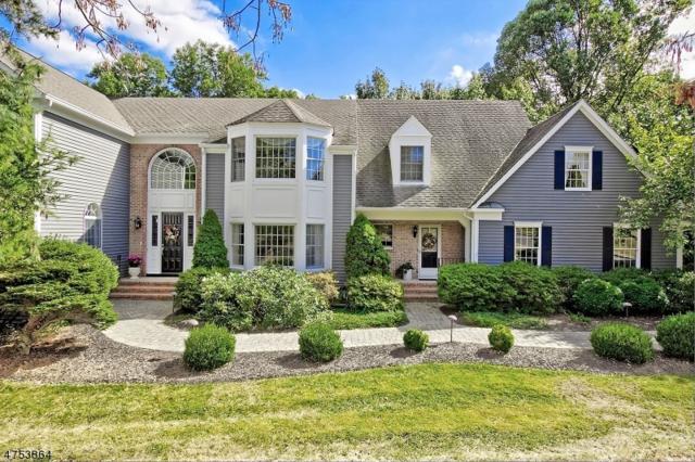14 Ryan Ct, Chester Twp., NJ 07930 (MLS #3424967) :: The Dekanski Home Selling Team