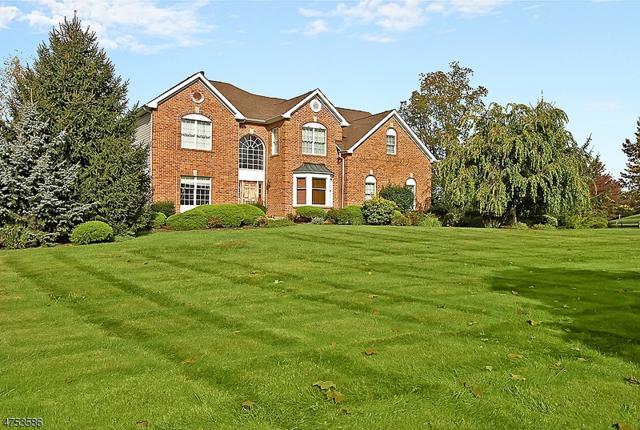 21 Steeplechase Ln, Franklin Twp., NJ 08802 (MLS #3424975) :: The Dekanski Home Selling Team