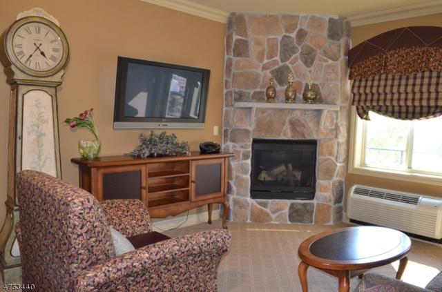 3 Wild Turkey Way, 1138 #138, Hardyston Twp., NJ 07419 (MLS #3425024) :: The Dekanski Home Selling Team