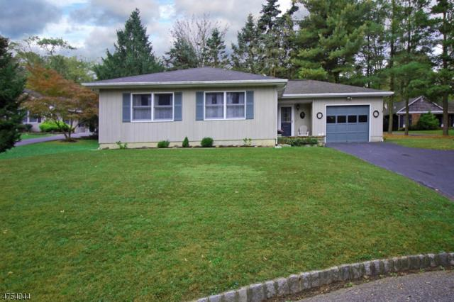 13 Northfield Ct, Lambertville City, NJ 08530 (MLS #3425125) :: The Dekanski Home Selling Team