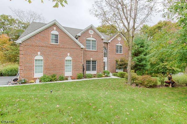 2 Vista Dr, Mount Olive Twp., NJ 07836 (MLS #3425251) :: The Dekanski Home Selling Team