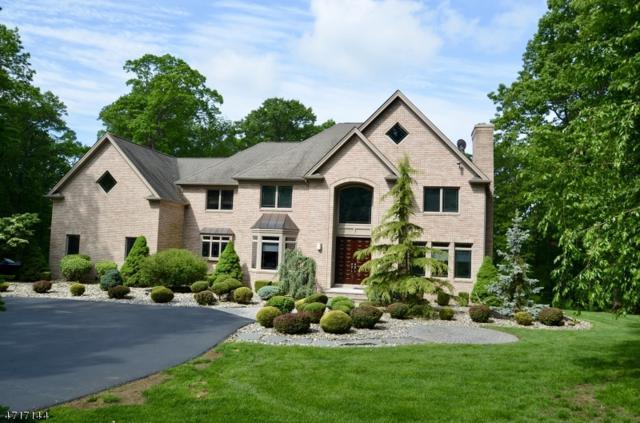 1 Sherwood Ct, Randolph Twp., NJ 07869 (MLS #3425291) :: The Dekanski Home Selling Team
