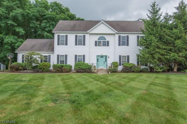 213 Flanders Netcong Rd, Mount Olive Twp., NJ 07836 (MLS #3425325) :: The Dekanski Home Selling Team