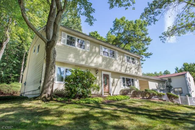 6 Stephen Ter, Parsippany-Troy Hills Twp., NJ 07054 (MLS #3425328) :: RE/MAX First Choice Realtors