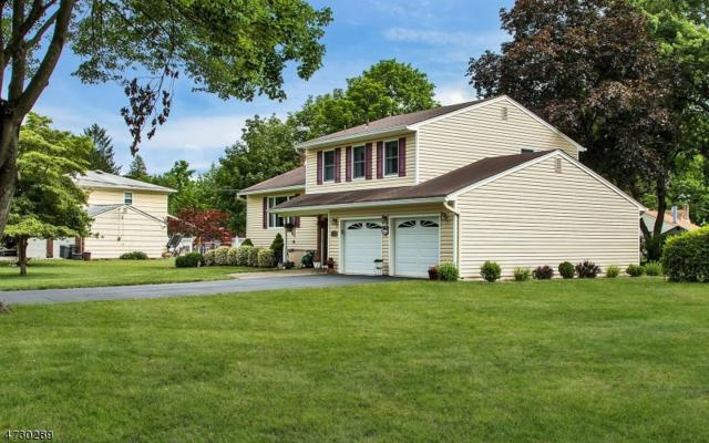 17 Evelyn Pl, Pequannock Twp., NJ 07444 (MLS #3425509) :: The Dekanski Home Selling Team