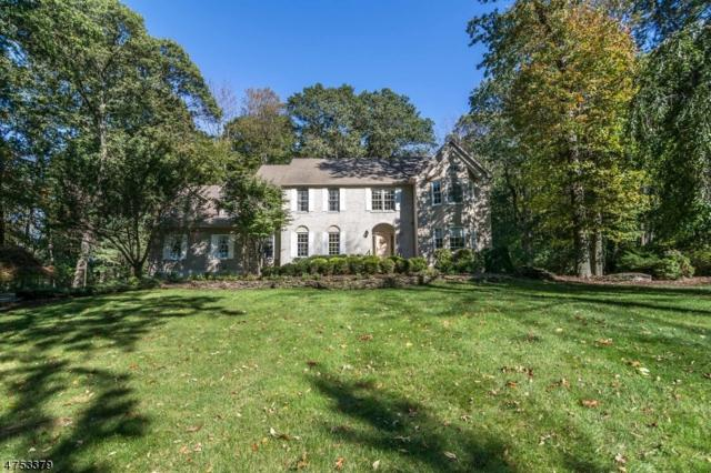 28 Aldebaran Dr, Randolph Twp., NJ 07869 (MLS #3425661) :: The Dekanski Home Selling Team