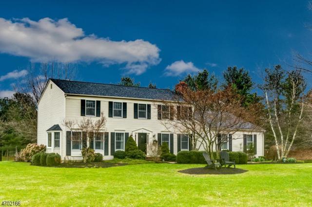 15 Cobblestone Ct, Montgomery Twp., NJ 08502 (MLS #3425690) :: Keller Williams Real Estate