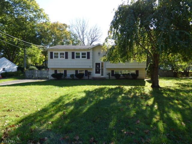 704 Hamilton Dr, Hackettstown Town, NJ 07840 (MLS #3425759) :: Keller Williams Real Estate