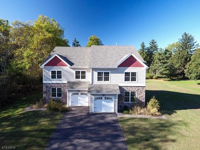 12 Riverside Dr, Clinton Town, NJ 08809 (MLS #3425909) :: The Dekanski Home Selling Team