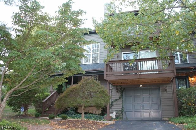 42 Chicopee Dr, Montgomery Twp., NJ 08540 (MLS #3426007) :: The Dekanski Home Selling Team