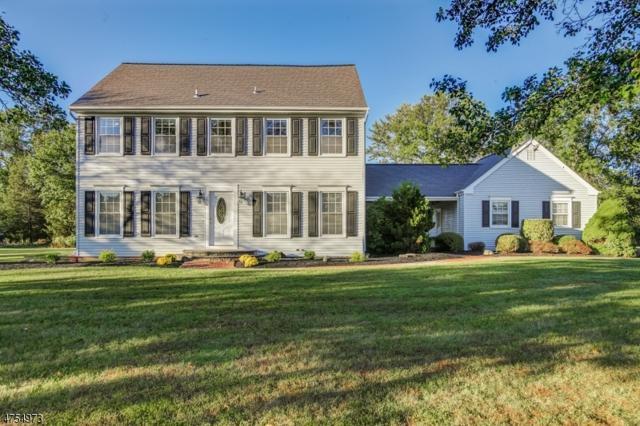 30 Kilmer Dr, Hillsborough Twp., NJ 08844 (MLS #3426028) :: The Dekanski Home Selling Team
