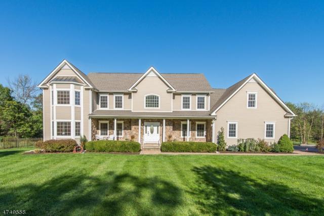 83 Railroad Ave, Readington Twp., NJ 08833 (MLS #3426081) :: The Dekanski Home Selling Team