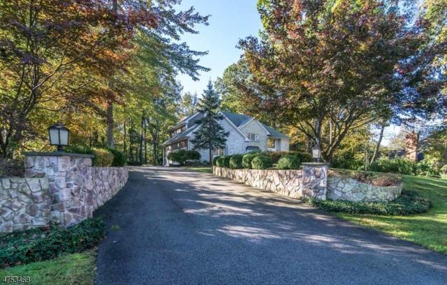 3 Canterbury Ct, Randolph Twp., NJ 07945 (MLS #3426083) :: The Dekanski Home Selling Team